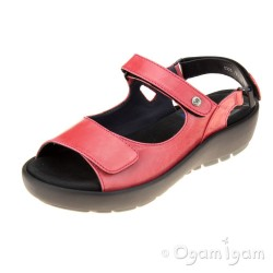 Wolky Rio Cyclame Womens Cyclame Maverick Lux Sandal